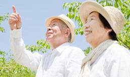 6 bí quyết đơn giản để sống trường thọ của người Nhật Bản