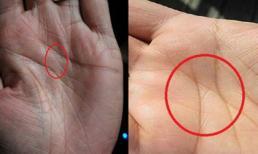 Nhìn vào lòng bàn tay mình và xem đi, nếu sở hữu đường chỉ tay như thế này, bạn đúng là 'của hiếm' của thế giới