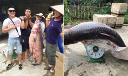 Bắt được cá trắm hơn 60 kg ở hồ Thác Bà, Yên Bái