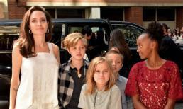 Angelina Jolie lên tiếng trước thông tin cô có nguy cơ mất quyền nuôi con