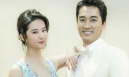 """Đây là lý do khiến Song Seung Hun chia tay """"thần tiên tỷ tỷ"""" Lưu Diệc Phi?"""