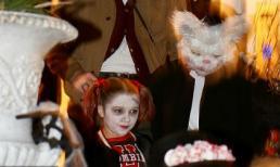 Harper hóa xác sống cùng mẹ và các anh trai quẩy tung đêm Halloween