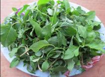 Loại rau giàu canxi được mệnh danh là 'siêu thực phẩm' của xương: Ở Việt Nam giá cực rẻ