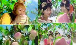 Bất ngờ với nguồn gốc vườn đào tiên nghìn năm ra hoa, nghìn năm kết trái trong phim Tây Du Ký 1986