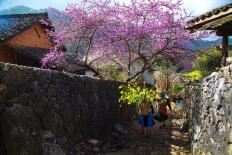 Những điểm du lịch lý tưởng nhất cho chuyến du xuân dịp Tết Nguyên đán 2019