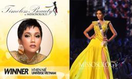 H'Hen Niê là đại diện Việt Nam đầu tiên trở thành Hoa hậu đẹp nhất thế giới năm 2018 do Missosology bình chọn