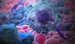 Những người không dễ bị ung thư đều có 4 điểm chung: Hãy xem bạn có thuộc nhóm này không?