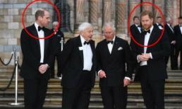 Vừa dính nghi vấn ngoại tình, Hoàng tử William còn bị tung bằng chứng rạn nứt với Hoàng tử Harry
