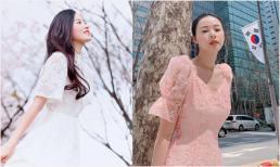 Midu xinh đẹp như tiên nữ, một mình du lịch Hàn Quốc, ngắm hoa anh đào