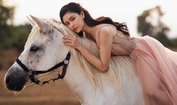'Nữ thần' Trương Quỳnh Anh gợi cảm và cuốn hút bên bạch mã