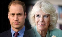 Bí ẩn về cuộc gặp của William và bà Camilla khiến Hoàng tử đến tận bây giờ vẫn không chấp nhận mẹ kế