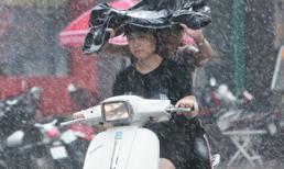 """Gió mùa đông bắc ùa về, miền Bắc chuẩn bị đón """"mưa vàng"""""""