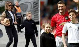 Harper siêu đáng yêu khi cùng gia đình tới cổ vũ David Beckham trở lại sân cỏ