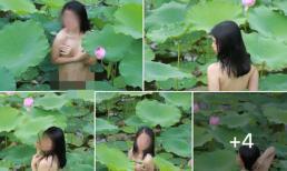 Khoả thân ngâm mình dưới đầm sen để chụp ảnh, cô gái trẻ bị dân mạng chỉ trích gay gắt