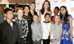 Angelina Jolie bị đồn lơ là khiến các con thả phanh uống rượu, xem những phim có nội dung cấm trẻ em