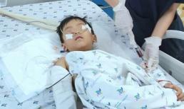 Bé 5 tuổi rơi từ tầng 12 chung cư thoát chết kì diệu