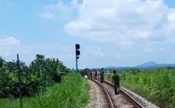 Lái tàu trượt chân ngã thiệt mạng ở Phú Thọ
