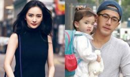 Mối quan hệ với Dương Mịch xuống dốc là do Lưu Khải Uy thuê bloggers đăng bài bôi nhọ, một mình xây dựng hình ảnh người cha tốt?