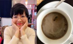 Ở khách sạn 4 sao, MC Thảo Vân giật mình thấy bọ 'bơi' trong cốc cafe, bò tứ tung khi đang ngủ