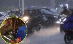 Bão số 4 gây mưa lớn ở Hà Nội, một thanh niên 26 tuổi bị cây đè tử vong