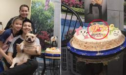 Khởi My tổ chức sinh nhật cho ông xã Kelvin Khánh nhưng lại để nhầm tuổi?