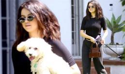 Đăng ảnh 'sương sương' mà đạt gần 10 triệu like, Selena Gomez tiếp tục gây bão dù chỉ dắt chó đi dạo, nguyên nhân nhờ điều này