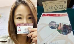 Lâm Tâm Như rút lui khỏi showbiz để trở lại giảng đường ở tuổi 43, fan giục 'đẻ đi học làm gì'