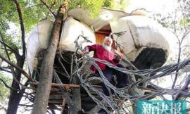 Độc đáo: Ngôi nhà trên cây của cụ ông 60 tuổi