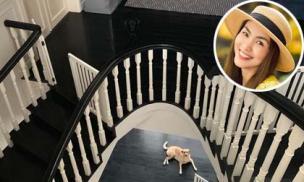 Đố ai nhanh mắt tìm ra hai chú chó trong nhà Tăng Thanh Hà?