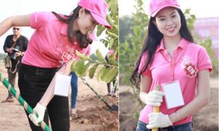 Thí sinh Hoa hậu Việt Nam 2014 miệt mài đào đất trồng cây