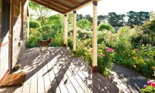 Ngắm ngôi nhà có khu vườn đầy nắng gió và hoa