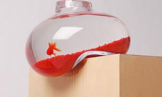 20 mẫu bể cá độc đáo khiến bạn mê mẩn