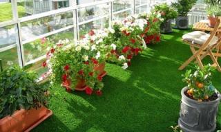 7 lời khuyên hữu ích khi tạo không gian xanh cho nhà phố