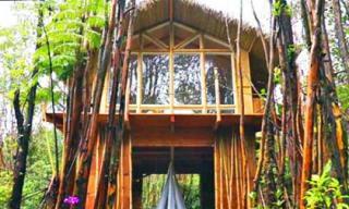 Đột nhập căn nhà nhỏ ở Hawaii xây hết 200 triệu đồng