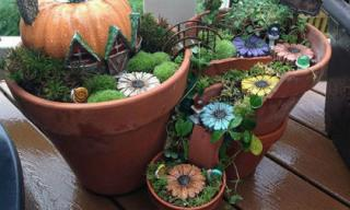 Tạo khu vườn tí hon đẹp đến ngỡ ngàng từ chậu hoa vỡ