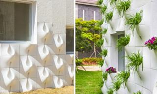 Mỗi khi mưa, bức tường biến thành thác hoa tuyệt đẹp