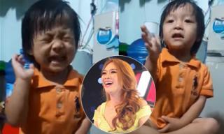 Cô bé 3 tuổi hát 'Như một giấc mơ' khiến Mỹ Tâm phấn khích