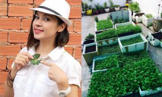 Việt Trinh khoe vườn rau sạch được trồng trong thùng xốp