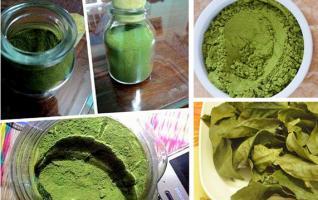 Cách làm bột trà xanh, bột nghệ sạch an toàn tại nhà
