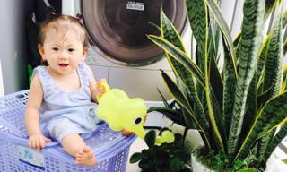 Con gái Trang Trần xinh như búp bê khi tưới cây giúp mẹ