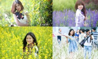 Những địa điểm chụp ảnh hoa tuyệt đẹp ở Hà Nội ngày nắng đông này