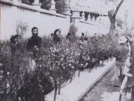 Hình ảnh chợ Tết xưa như thế nào?