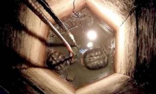 Phát hiện hai sinh vật sống thần kỳ trong giếng cổ bị vùi lấp 30 năm
