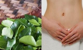 Chữa dứt điểm viêm ngứa vùng kín hiệu quả không ngờ từ lá chanh