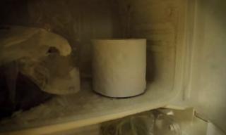 Đặt cuộn giấy vệ sinh vào tủ lạnh, tôi hết sức kinh ngạc trước kết quả thật tuyệt vời