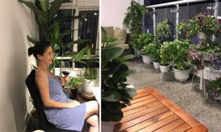 Không gian ngập tràn sắc hoa và cây xanh trong căn hộ của Thân Thúy Hà