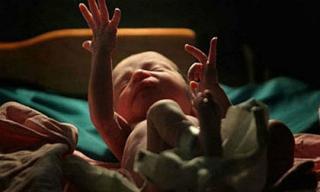 Bé trai sơ sinh sống lại ngay trước khi bị hỏa táng gây chấn động dư luận