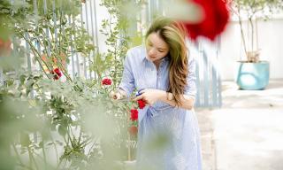 Lý Nhã Kỳ lãng mạn giữa vườn hồng