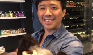 Gạt bỏ mối 'thâm thù', Trấn Thành - Hari cùng hợp tác chữa bệnh cho mèo cưng 3.000 USD