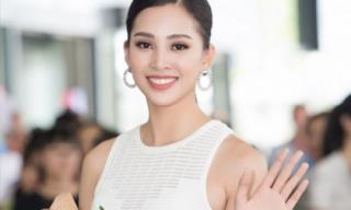 Hoa hậu Tiểu Vy gây bất ngờ với khả năng nói tiếng Anh cực lưu loát